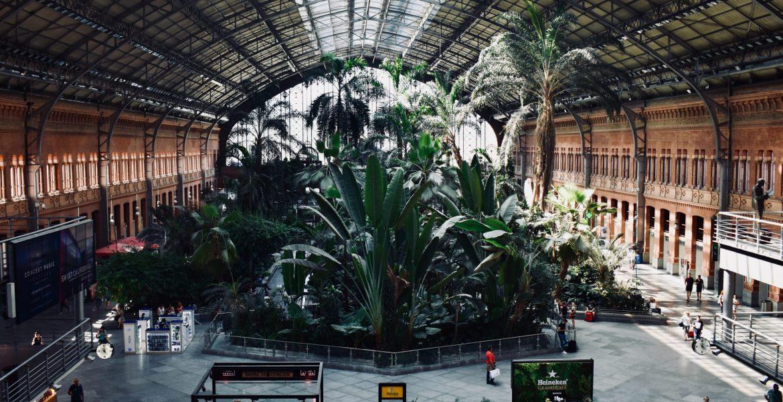Nuevas subvenciones del Ayuntamiento de Madrid para salas de conciertos y festivales de música